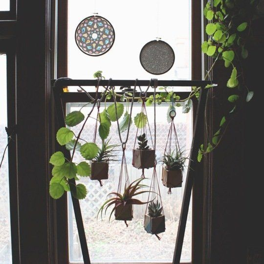The Urban Gardener Indoor Window Garden Inspiration Indoor Window Garden Garden Windows Urban Garden