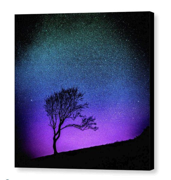 Tree Sunset Stretched Canvas Wall Art; Purple, Blue & Black Ombre Sky Silhouette Print: Starry Starry Night by Susan Maxwell Schmidt 14 x 14