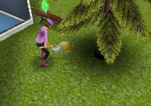 Sims cleaning