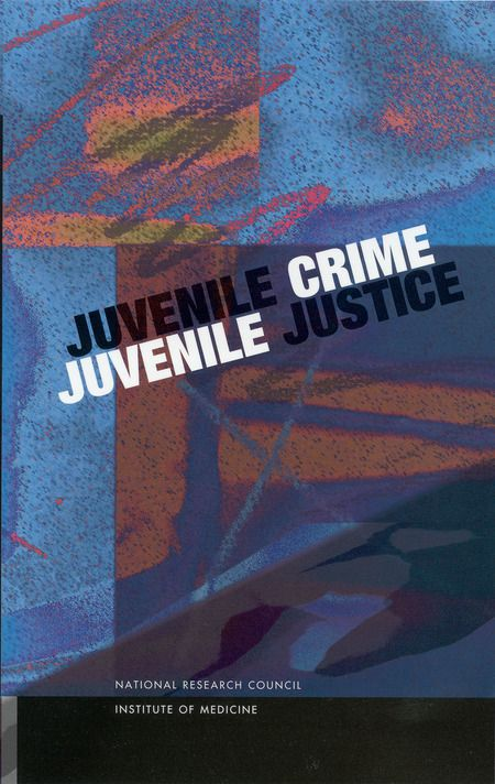 Juvenile Crime Justice Essay Youth