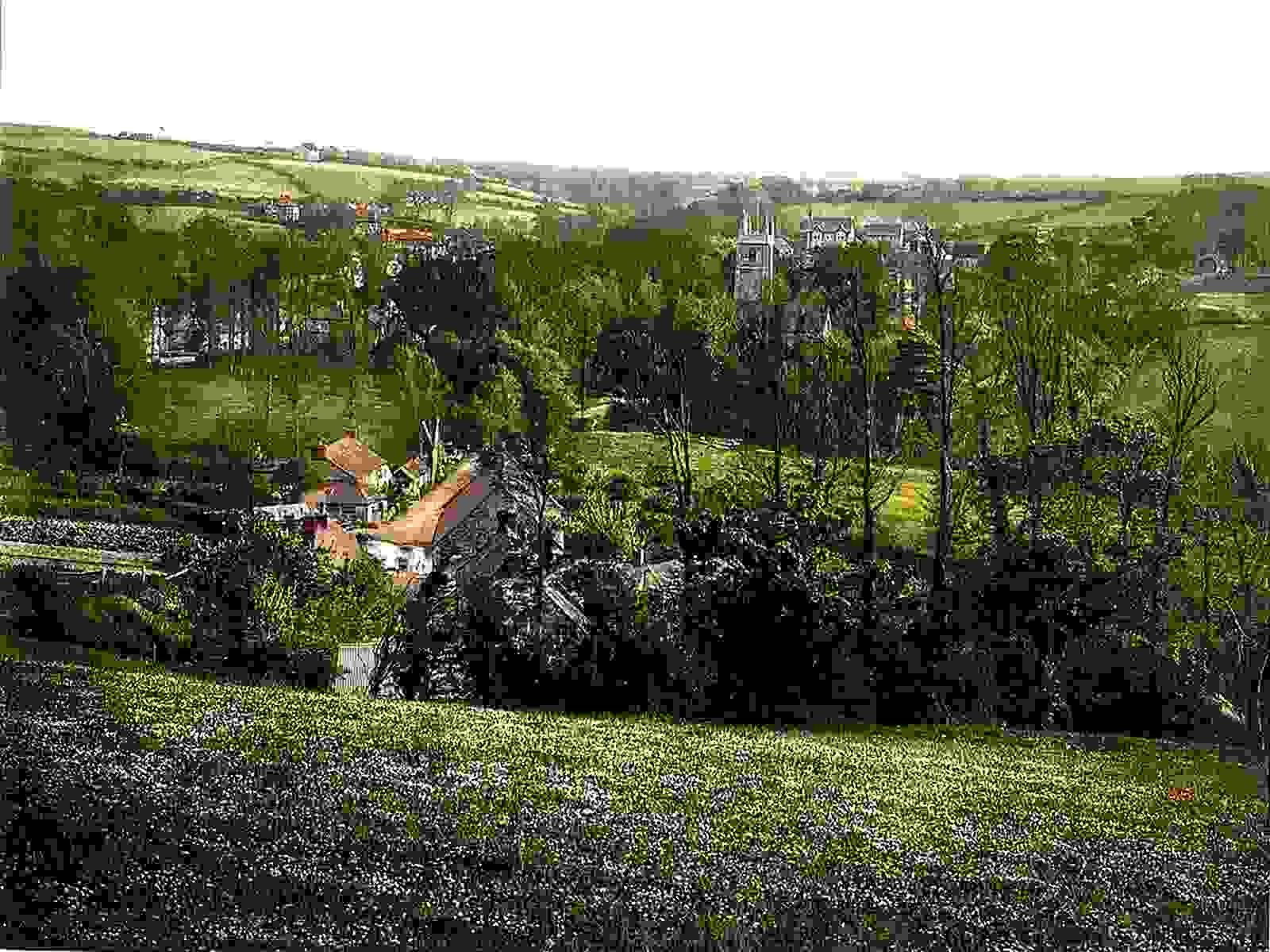 latest addition Mawgan Vale of Lanherne