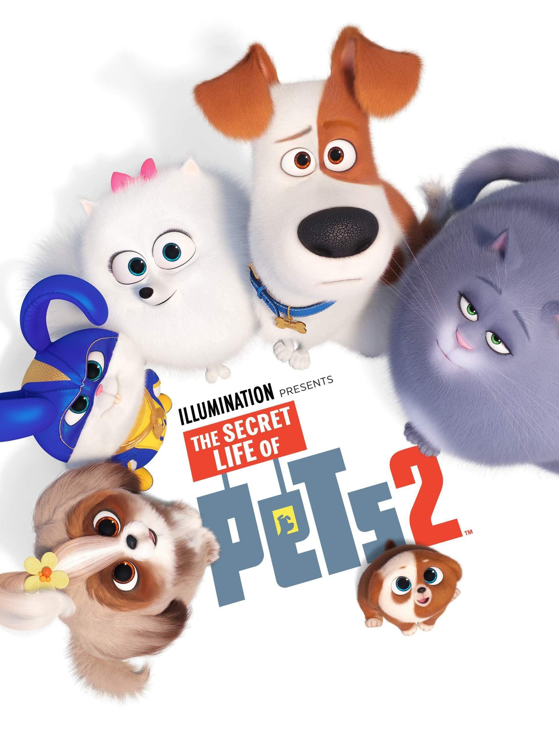 Amazon Com Watch The Secret Life Of Pets 2 Primevideo The