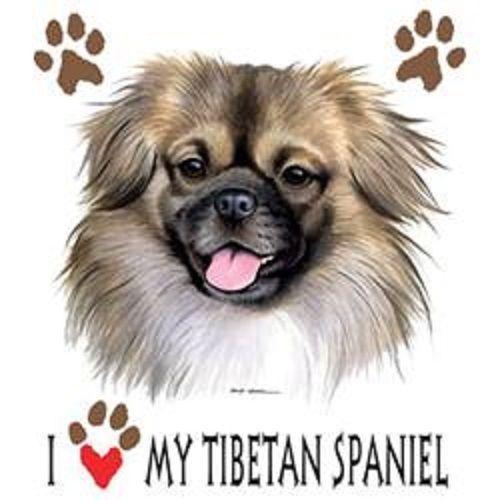 Details about I Love My Tibetan Spaniel Dog HEAT PRESS
