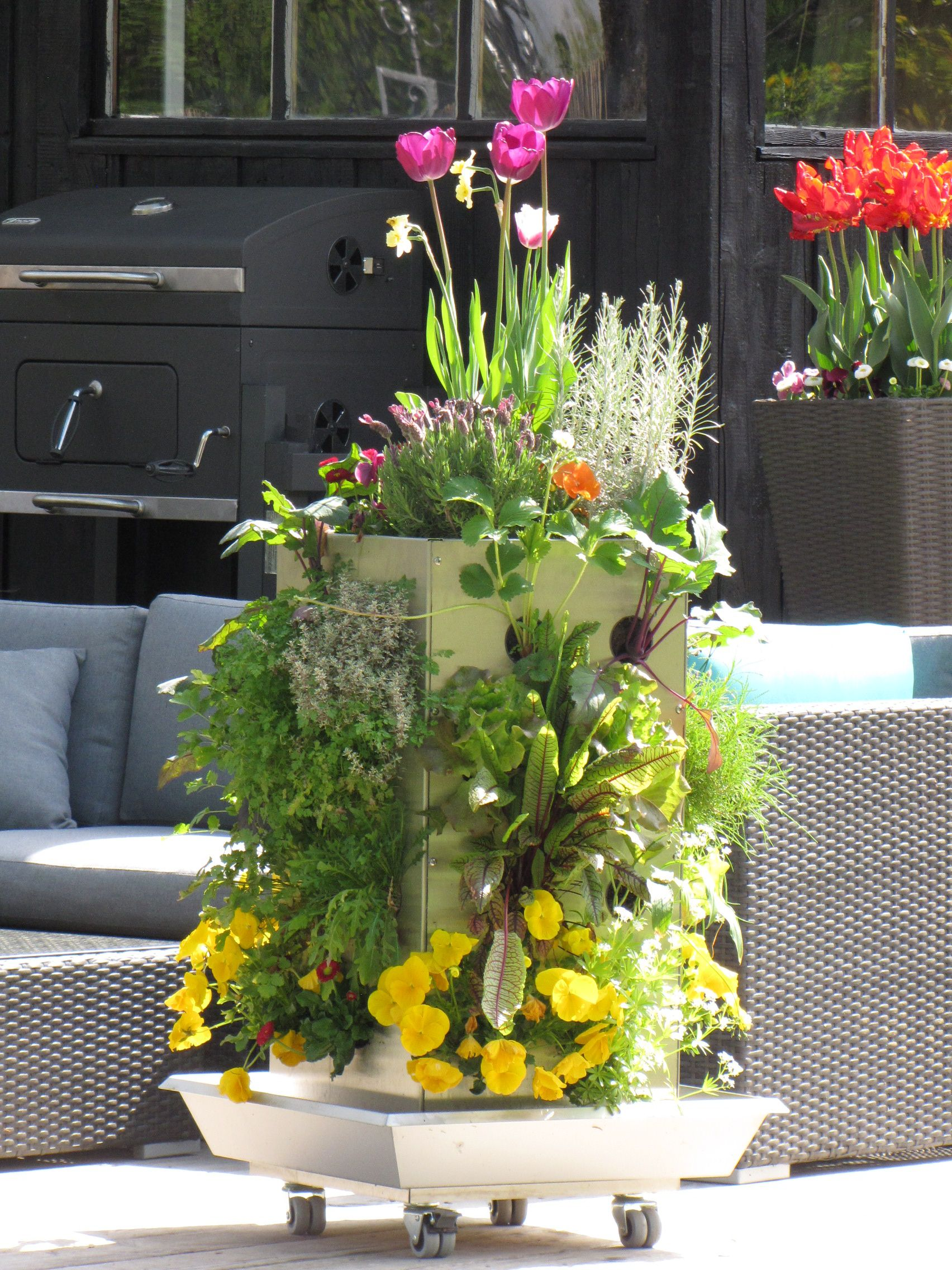 kubi ttg f r balkon und terrasse mit integriertem kompostiersystem und wasserspeicher. Black Bedroom Furniture Sets. Home Design Ideas