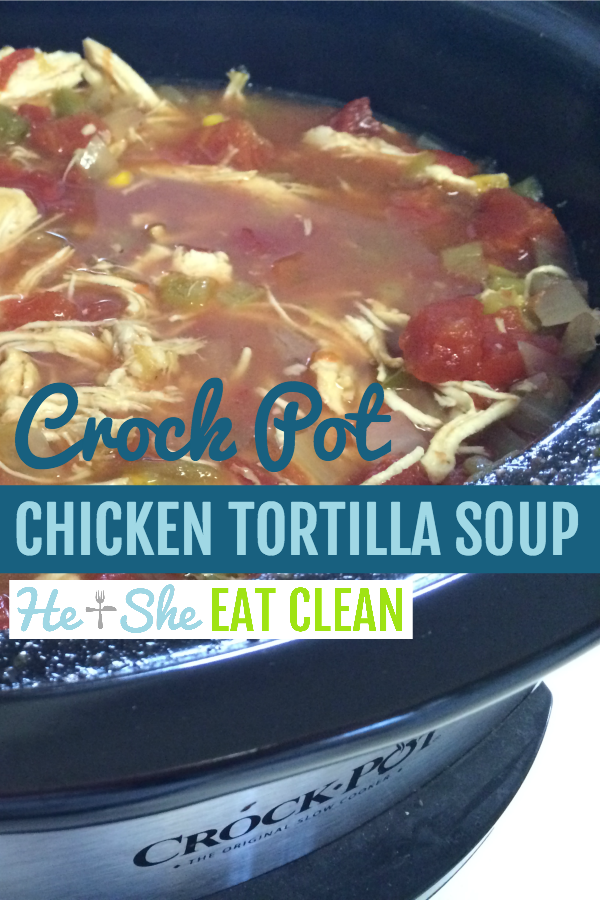 Create this easy crock pot chicken tortilla soup while you are at work or out running errands! It's...