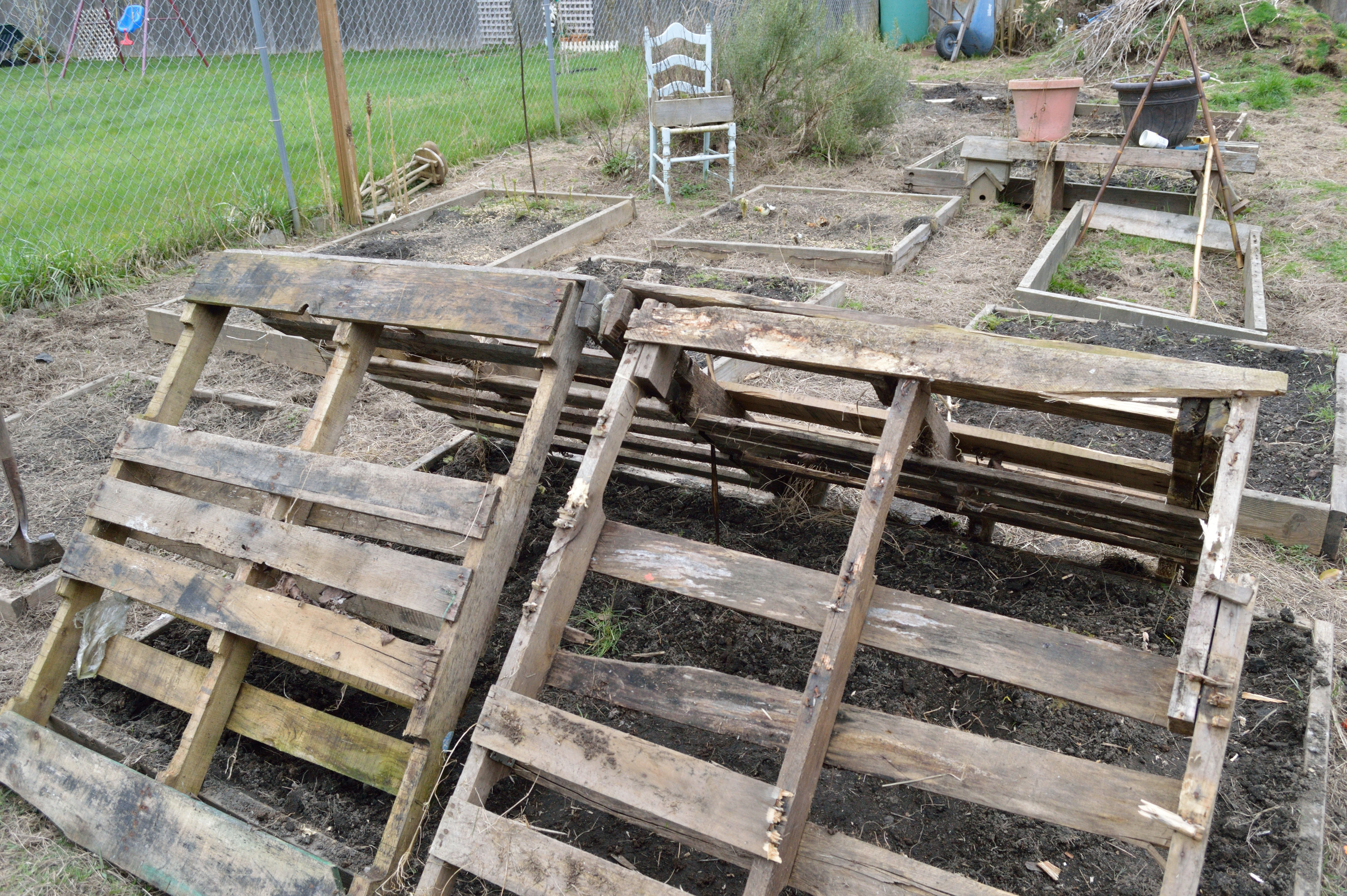 How To Make A Wooden Pallet Greenhouse For One Dollar ...