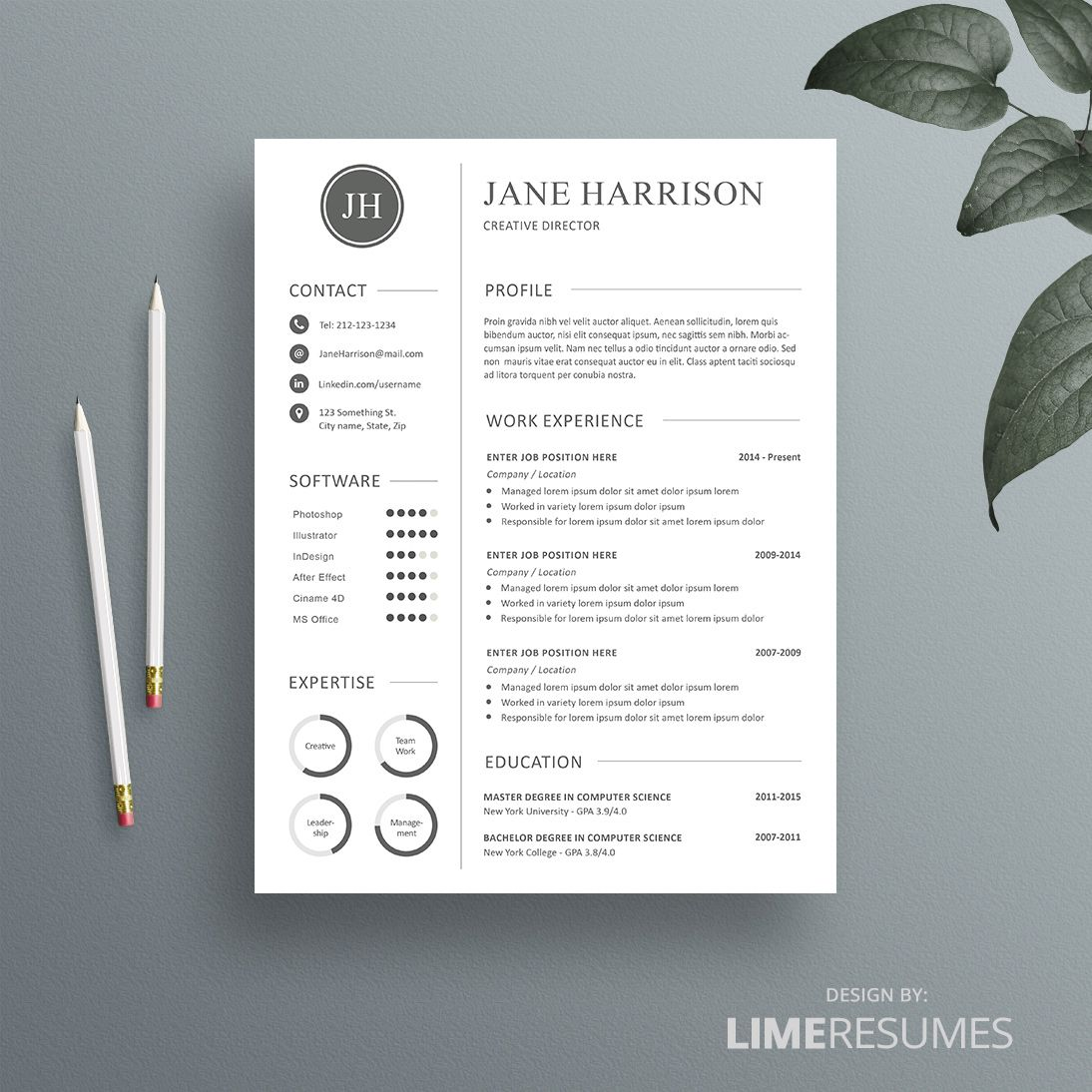 Professional Cv Template  Matching Cover Letter  Reference Page