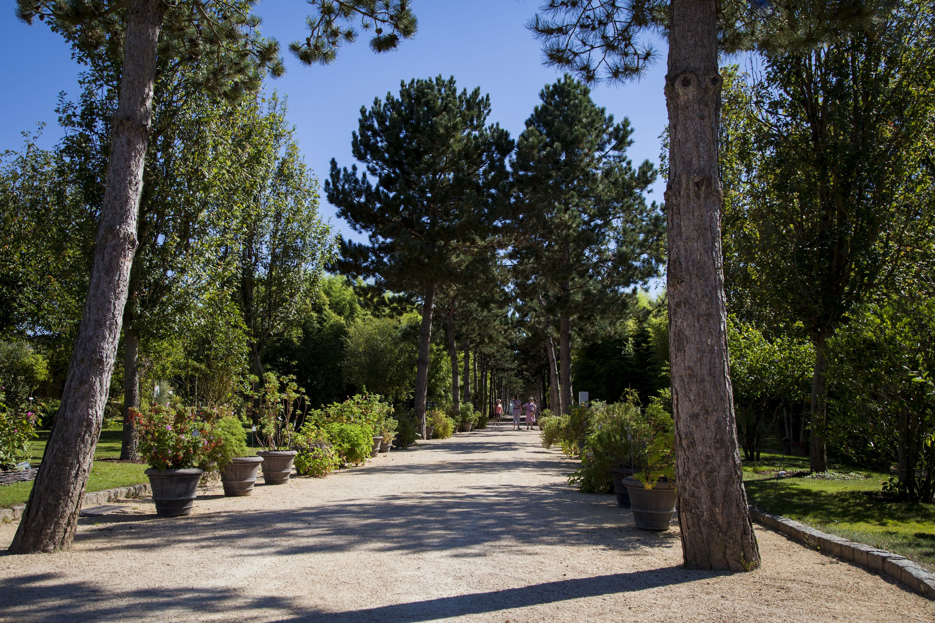 jardin botanique yves rocher jardin botanique pinterest