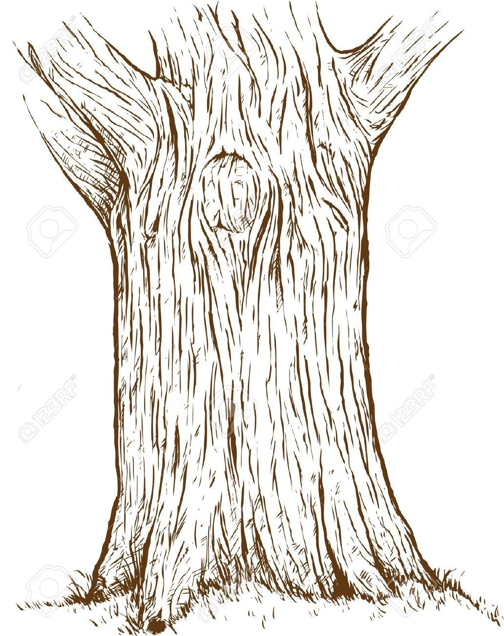 tree trunk drawing google search drawing ideas in 2018