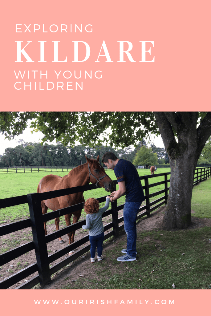 Explore County Kildare with young children Family