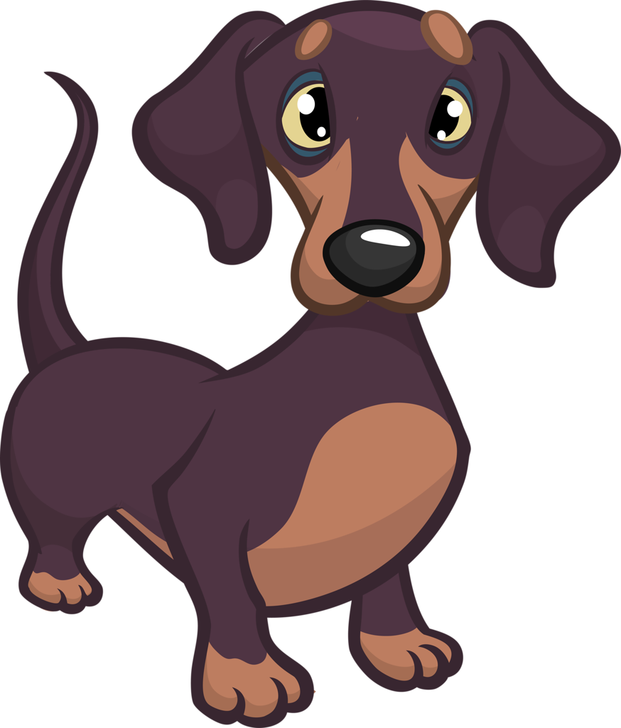 6 175 dachshund stock illustrations cliparts and royalty free dachshund vectors [ 874 x 1024 Pixel ]