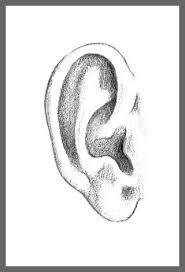 Image Result For How To Draw A Left Ear Ogen Tekenen Gezichten Tekenen Schetsen Tekenen