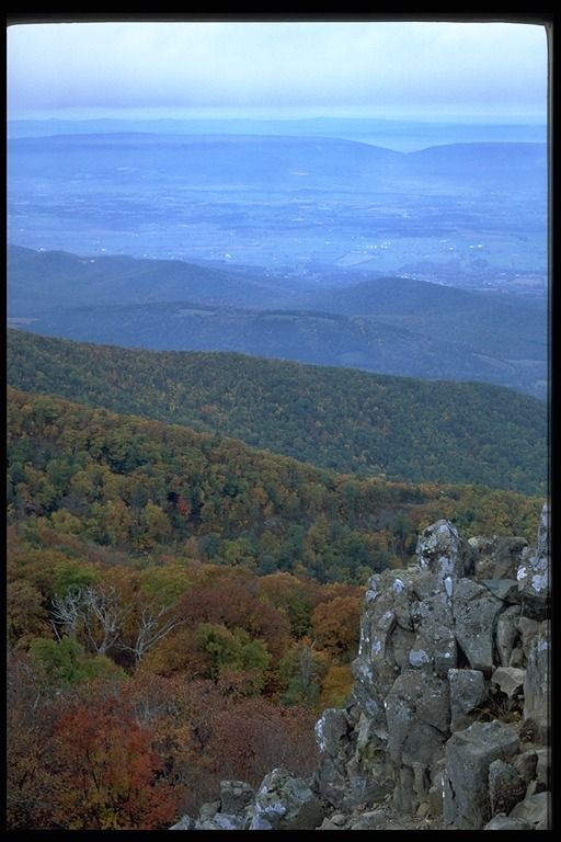 West Virginia-native mountain mama!