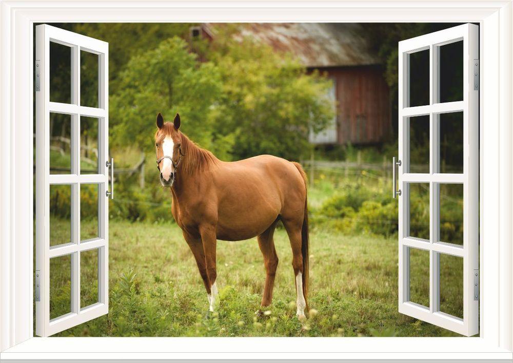 horse paddock 3d window wall art sticker decal mural wallpaper size