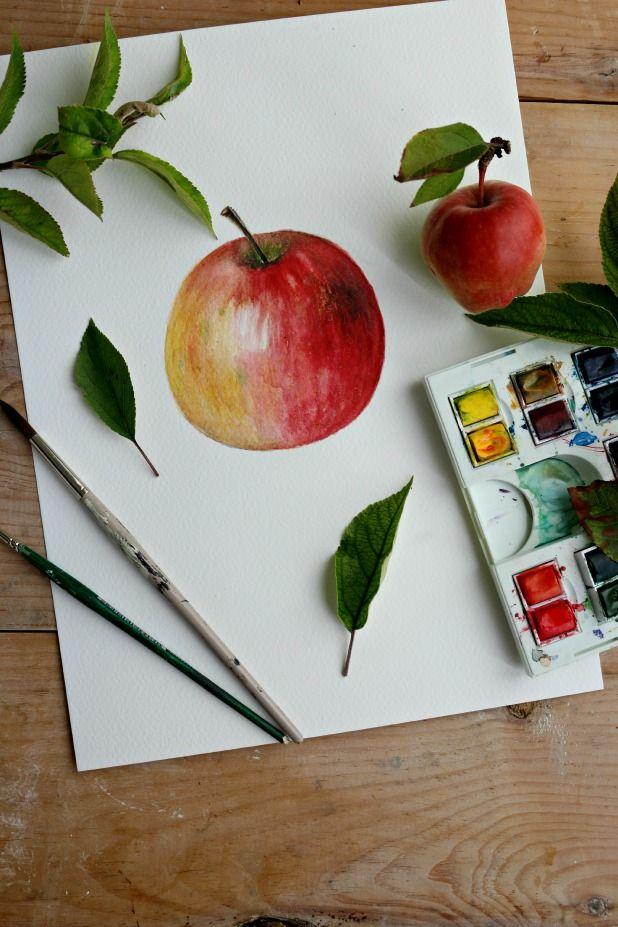 Как нарисовать яблоко акварелью   Картины акварелью ...