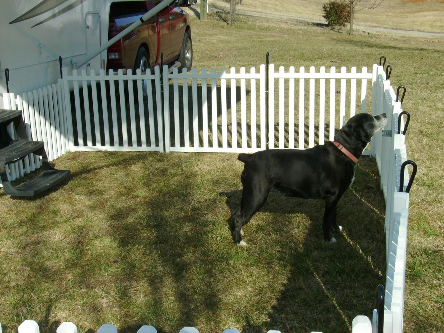 Portable Dog Fence Panels for Camping