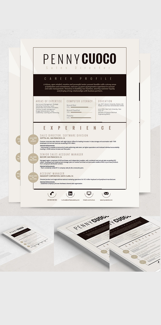 Alcyone Resume Template 68299 Resume template