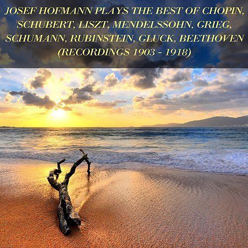 Josef Hofmann Plays The Best Of Chopin Schubert Liszt Mendelssohn Grieg Schumann Rubinstein Gluck Beethoven De Josef Hofmann Sistema De Audio Canciones