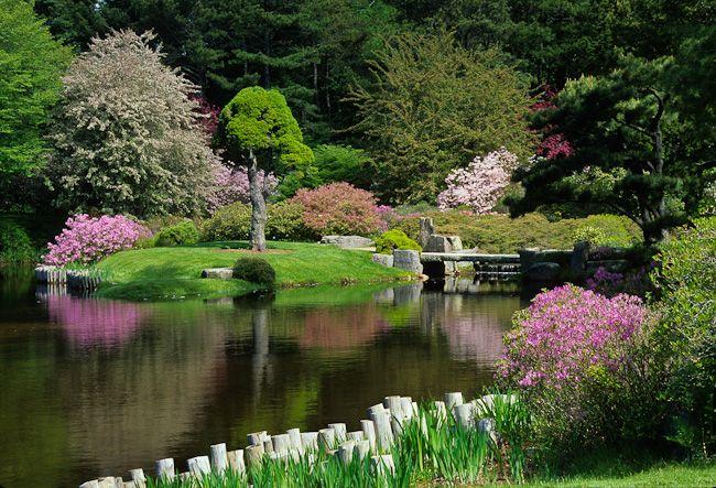 Spring at the asticou azalea garden in maine beautiful for Formal japanese garden