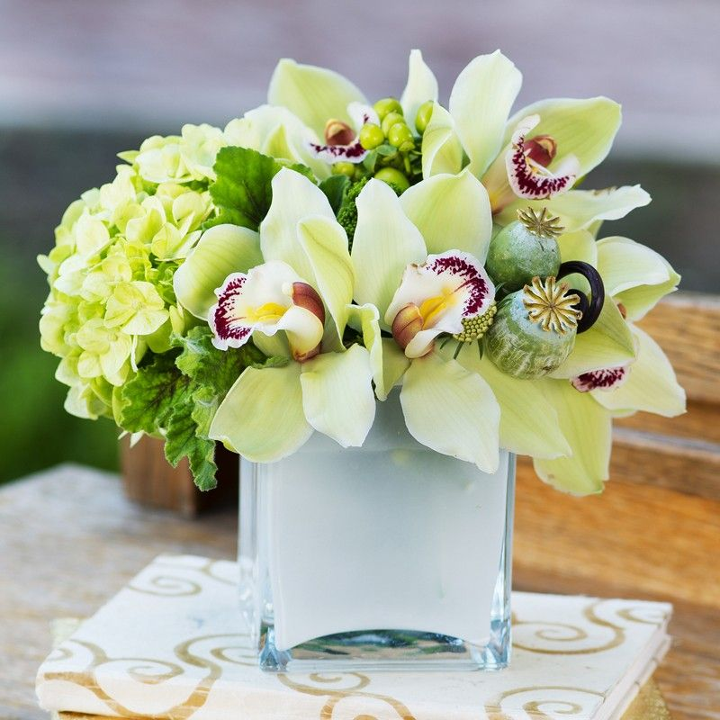 Green Orchid By The Dezign Shop Orchid Flower Arrangements Flower Arrangements Simple Orchid Arrangements