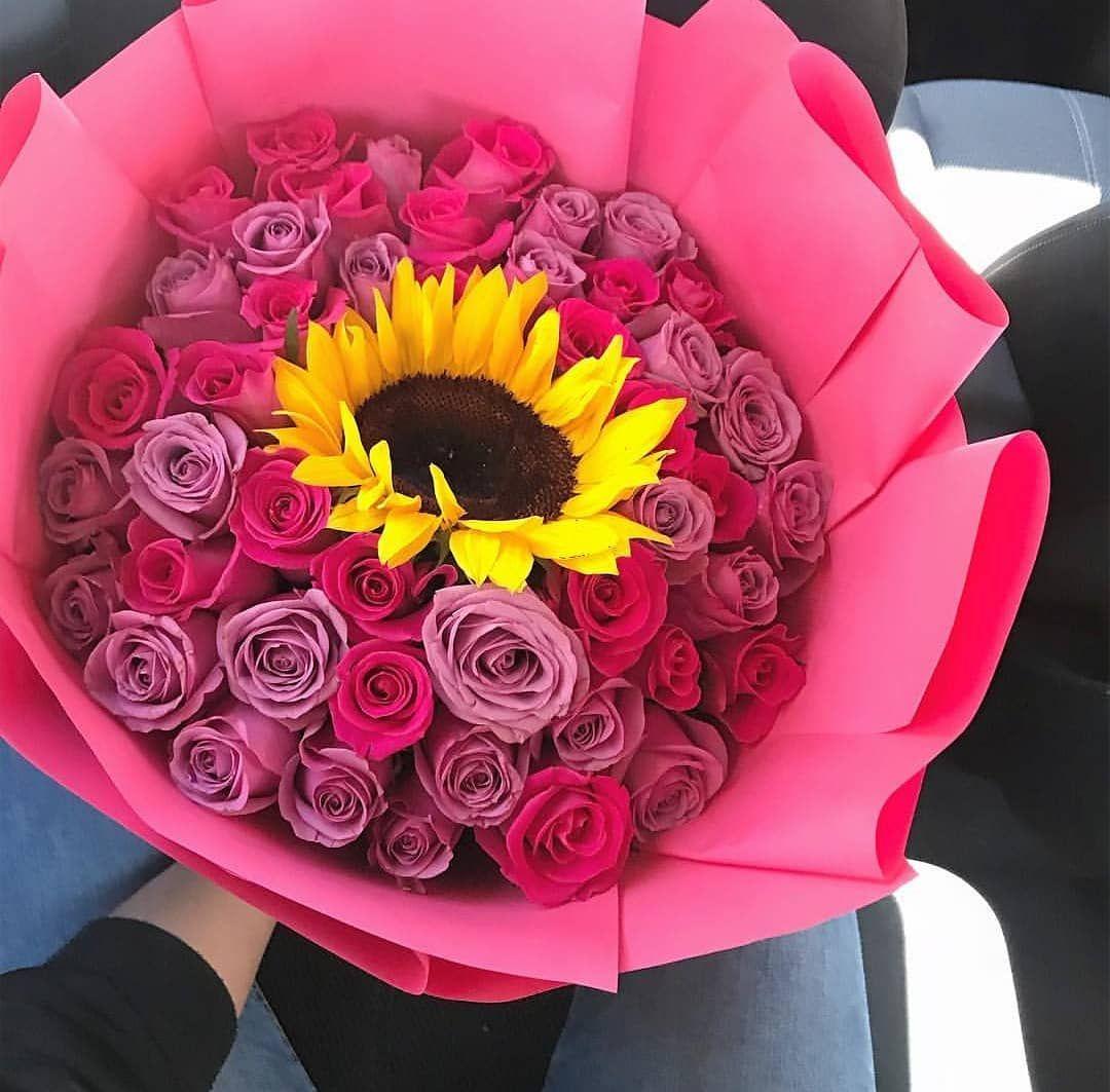 Ramos Unicos Sunflower Sunflowers Girasol Girasoles