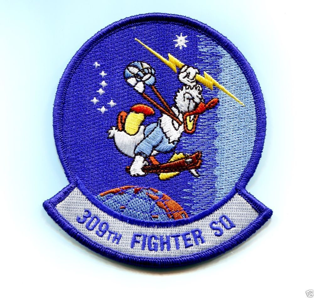 309th Fighter Squadron US Air Force patch Wild Ducks Air