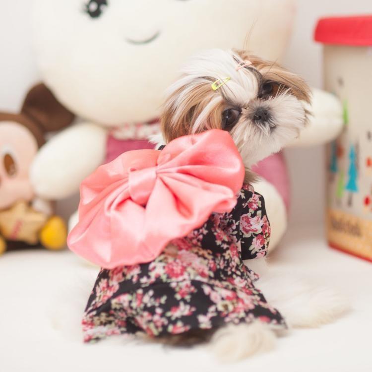 Pet Kimono Pets Fashion Puppy Clothes Cute Dog Halloween