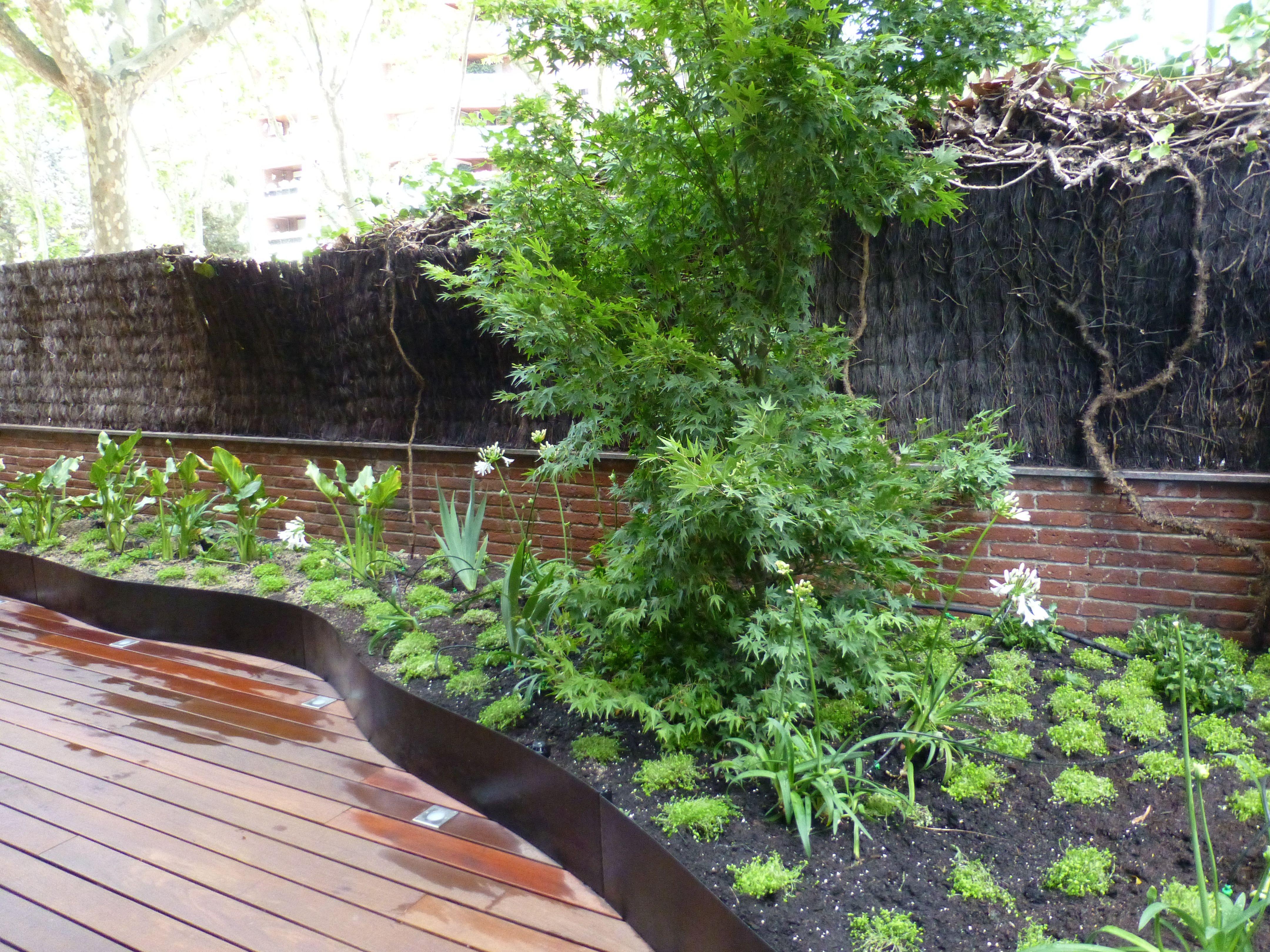 Terraza Con Madera Plantas Tapizantes Www Tindas Es Paisajismo Terraza Diseno De Jardin