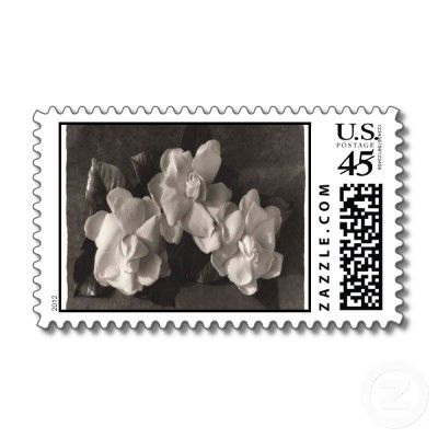 Black and white magnolia postage stamps!