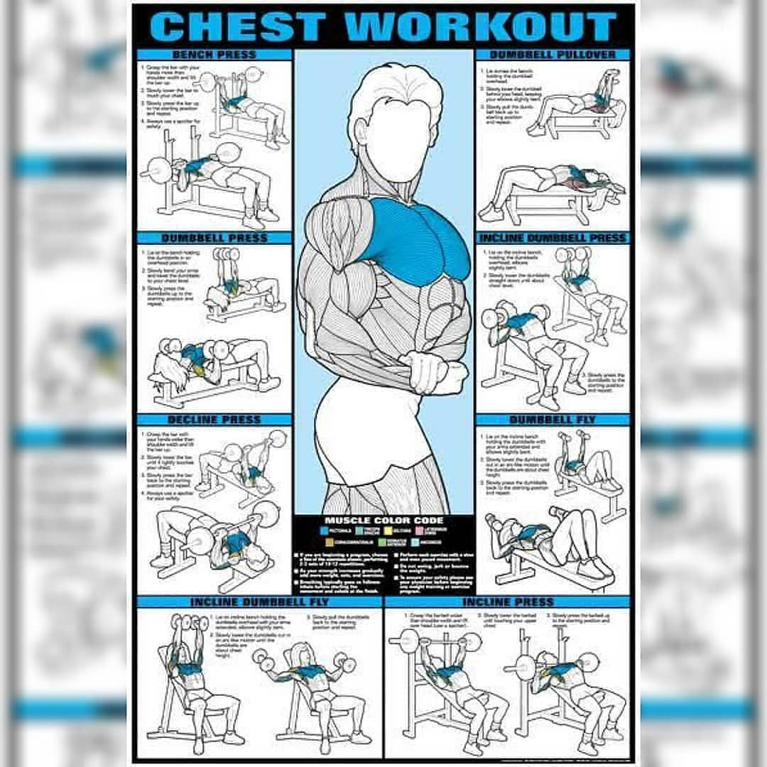 CHEST AND TRI'S?? 🔑🔑 STAY TUNED Follow:  @workout  .acadmey chestworkout   #fitness     #bodybuildin...