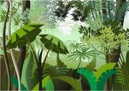 Jungle plants search