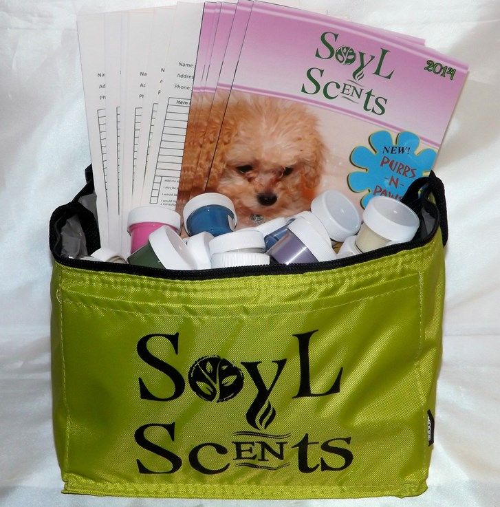 NEW SPRING 2014 SCENT SAMPLE SET Comes with 5 Catalogs, 5 Order - sample order forms