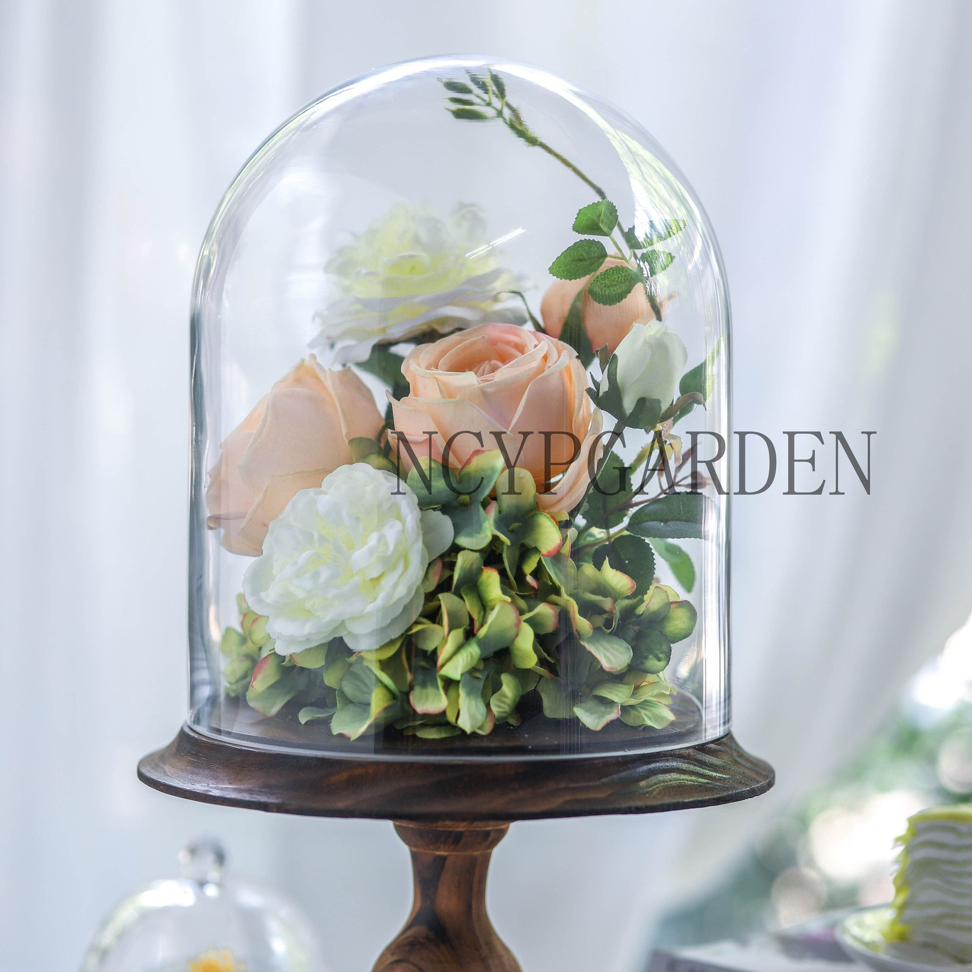 Clear Glass Cloche Plants and Flowers Holder Dome Display Cover w// Base