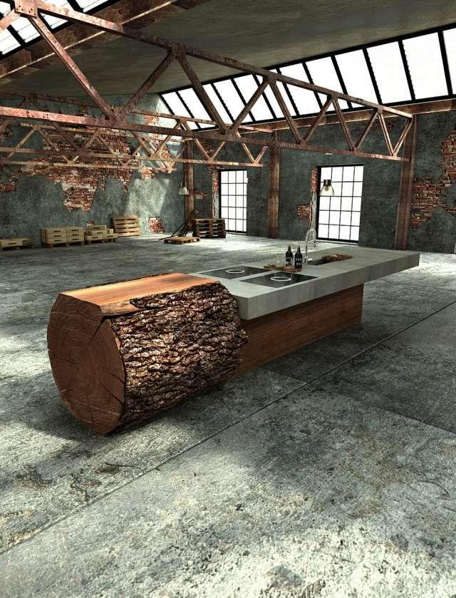 L\u0027îlot central de cuisine des exemples fonctionnels Industrial