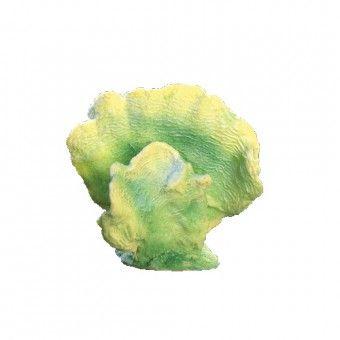 lettuce312