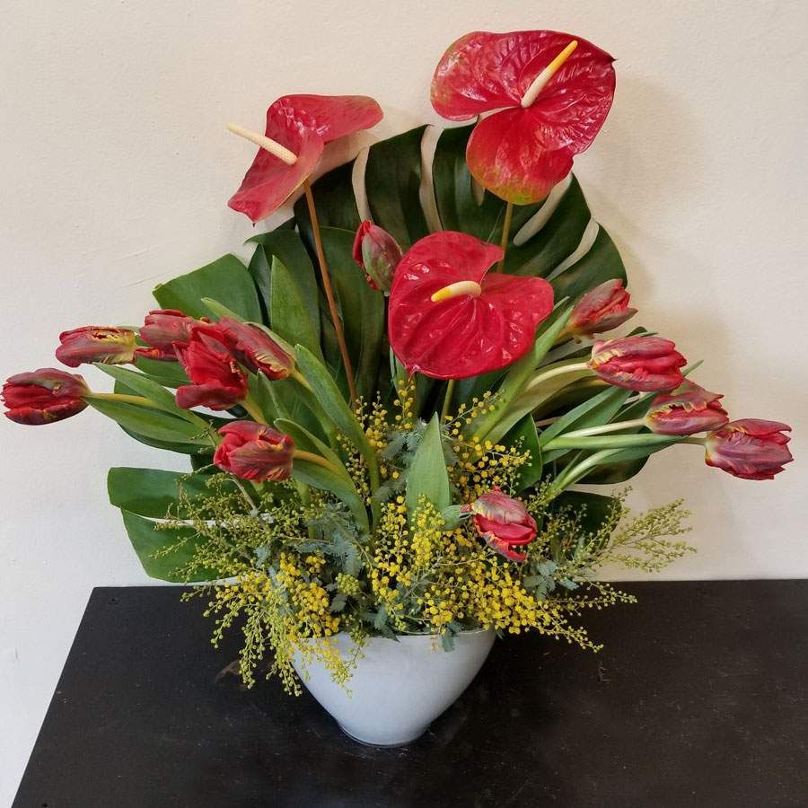 Red Tulips And Anthuriums Mixology Flower Arrangement Flower Arrangements Anthurium Flower Valentine Flower Arrangements