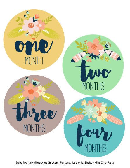 photo relating to Baby Month Stickers Printable known as PRINTABLE Little one Regular Stickers.Floral Child Stickers. Child