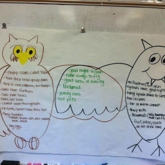 owl at purdue compare contrast essay