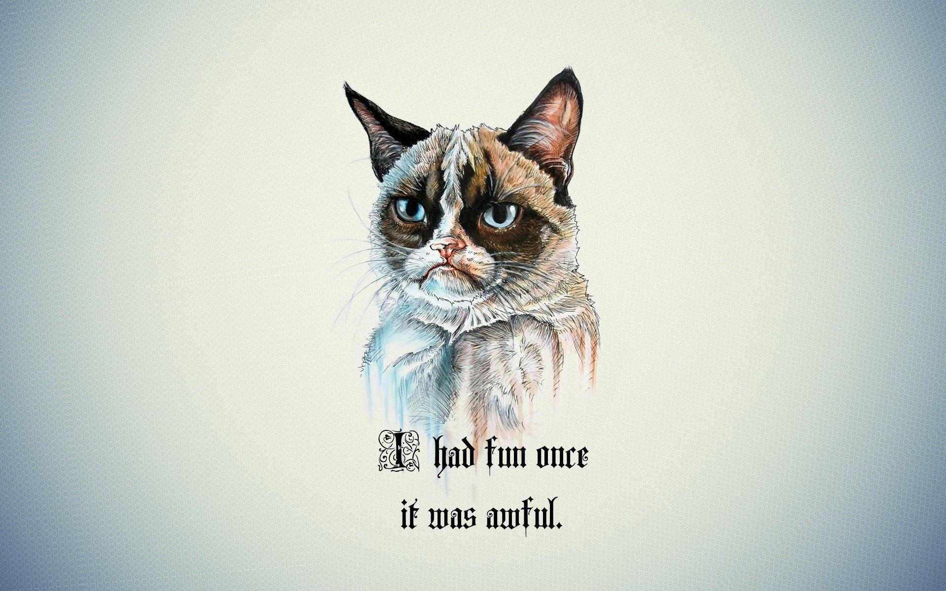 Grumpy Cat Quotes Wallpaper No 9408 Wallhaven Cc Hipster Cat Cat Wallpaper Funny Cat Wallpaper