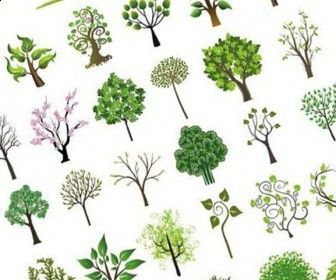 Tree Vector Art Graphics Set Free Download | Designers Social ...