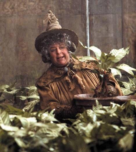 Pomona Sprout Herbology Hogwarts Teachers Harry Potter Characters Harry Potter