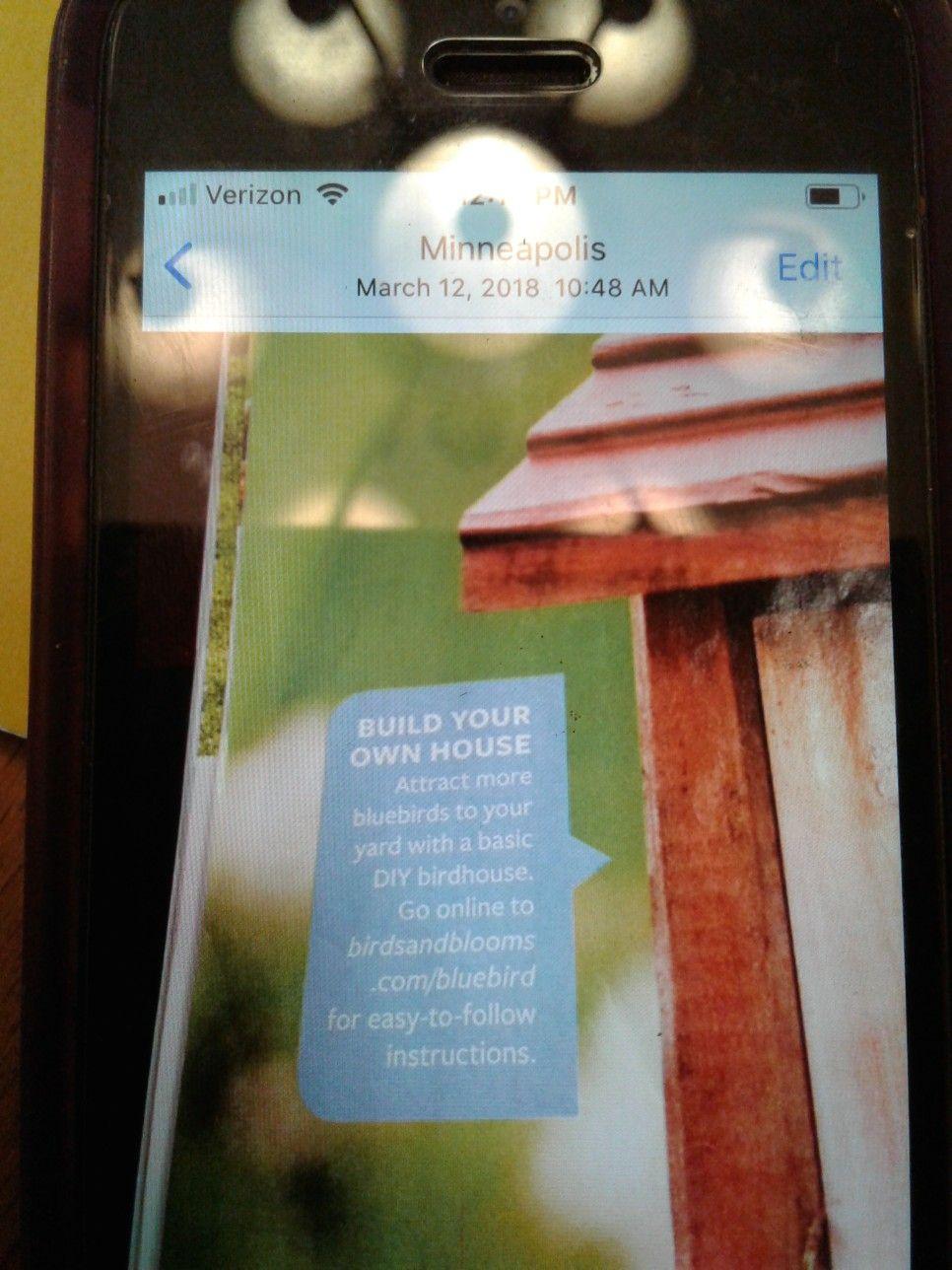 Blue bird houses bluebird house build your own house