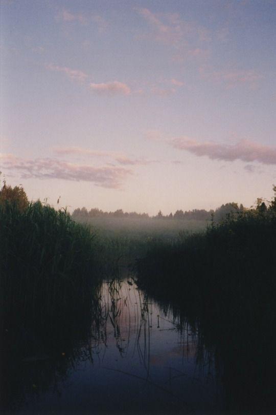 by  Nikita Sobolev