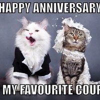 5ec7204e07bfee6b5bdc96c02d9ef18a happy anniversary meme google search just fun pinterest,10 Month Anniversary Meme