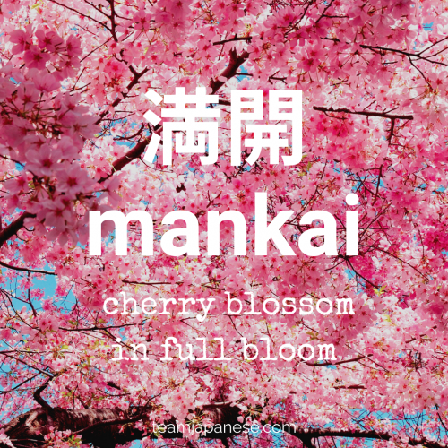 16 Essential Japanese Words For Spring Japanese Words Japanese Phrases Japanese Names And Meanings