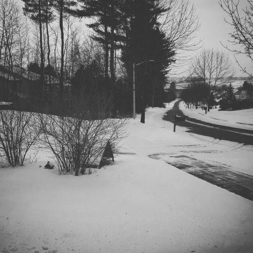 yseultdel:  Winter  #snow (à Essex Junction Vermont)