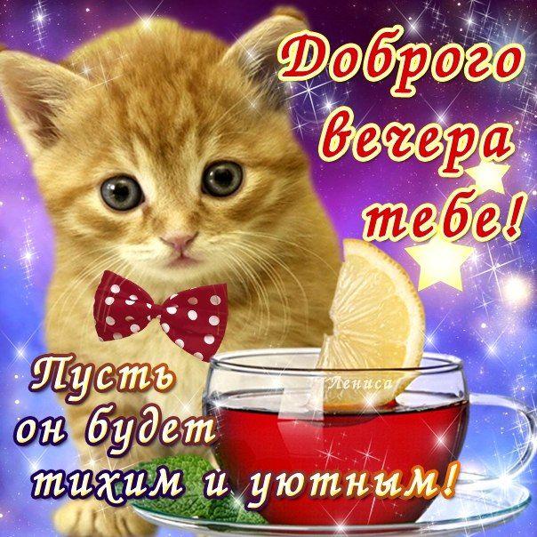 Красивые открытки доброго вечера и хорошего настроения 5