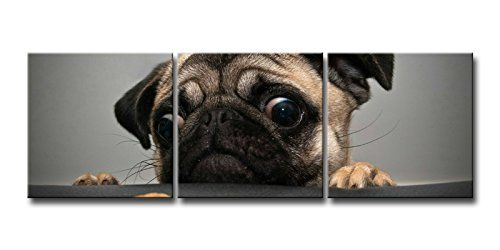 3 Pieces Wall Art Painting Crazy Pug Prints On Canvas The Picture Animal Pictures Oil For Home Modern Decoration Print Decor animal http://www.amazon.com/dp/B00L4YHVLC/ref=cm_sw_r_pi_dp_bXx6tb03VMP64