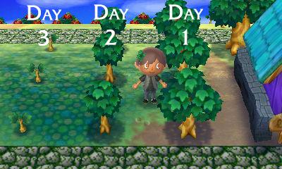 Treebush Pattern Theories Acnl Animal Crossing Game Animal