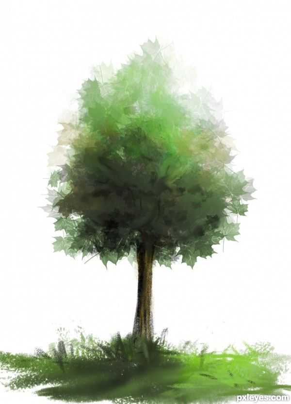 Create Beautiful Custom Brushes For Painting Trees Photoshop